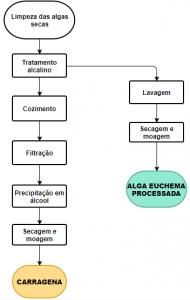 fluxograma de produção de carragena e alga Euchema processada.